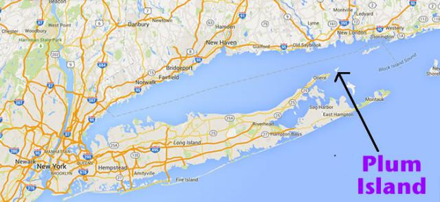 Did Lyme disease come from Plum Island